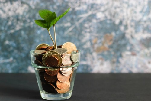 Buy used baby clothes online-Glass filled with coins and a little plant in the middle.