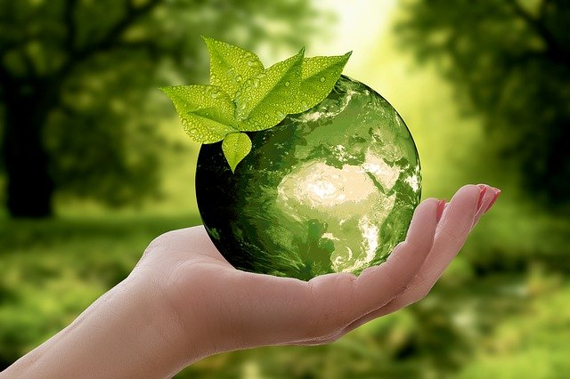 What's in Bambo nature?-Lady holding nature earth.