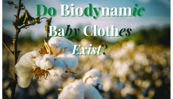 Do Biodynamic baby clothes Exist?-White cotton plants.
